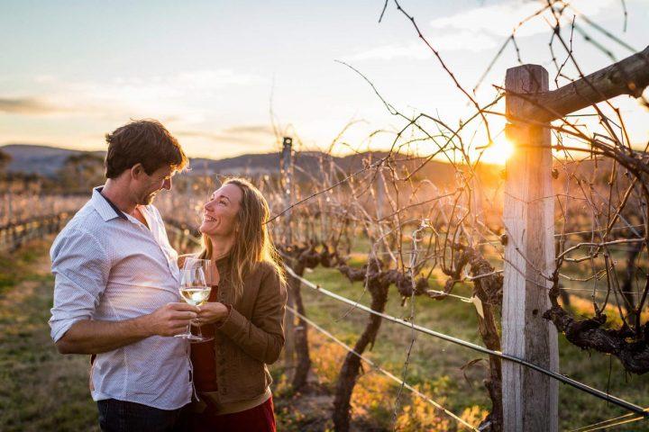 Skydance-Stranthorpe winery tour